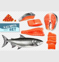 Realistic salmon set vector