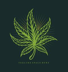 vintage weed leaf marijuana vector image