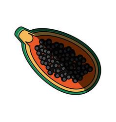 isolated papaya fruit vector image vector image