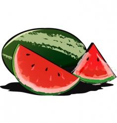water melon vector image