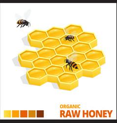 isometric sweet honeycomb and bees raw honey vector image