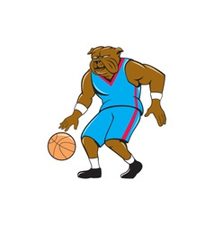 Bulldog Basketball Player Dribble Cartoon vector image vector image
