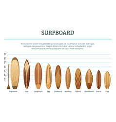 set of different hawaiian surfboards vector image vector image