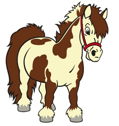 Cartoon pony vector