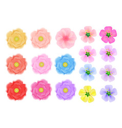 colored flowers of three kinds on a white vector image
