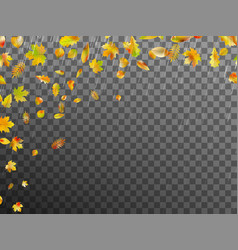 falling autumn leaves eps 10 vector image