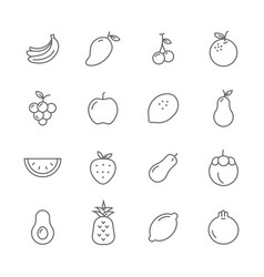 fruits lines icons set vector image