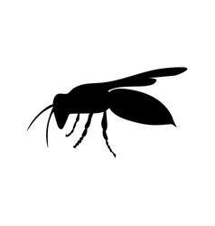 wasp insect black silhouette animal vector image