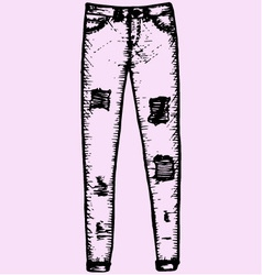 womens jeans vector image