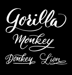 gorilla animal hand written typography vector image