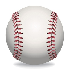 Baseball isolated vector