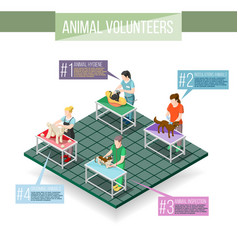 Animals volunteers isometric infographics vector
