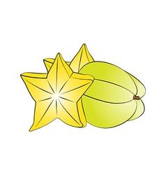 Carambola star fruit vector image