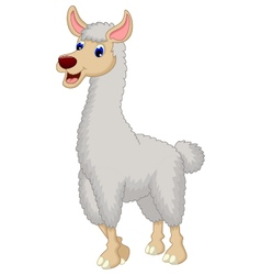 cute lama cartoon vector image