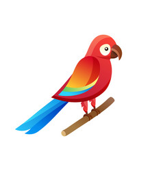 parrot at pet shop sitting vector image