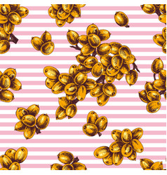seamless pattern with hand drawn sea buckthorn vector image