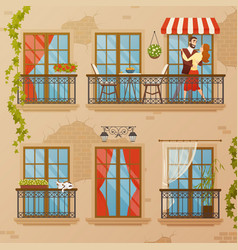 classic window balconies composition vector image