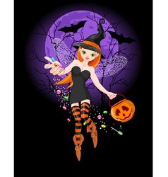 Halloween witch vector image vector image