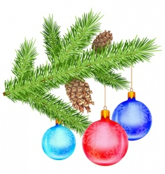 christmas branch vector image