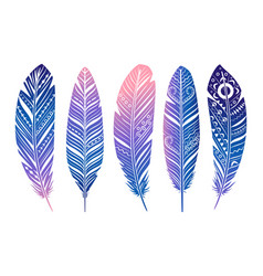 color feathers set hand sketched tribal vector image