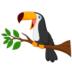 Cute toucan bird cartoon vector