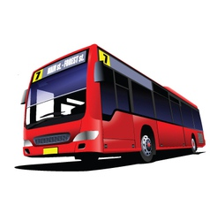 Double decker tours vector