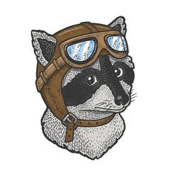 Raccoon pilot sketch vector