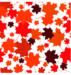 seamless background with red maple leaves vector image