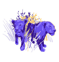 Two graphic female lions standing among grass vector