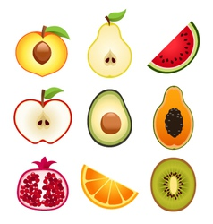 Halve fruits icons vector