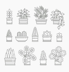 set of houseplants icons in line design editable vector image