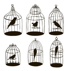 birds in cages silhouettes vector image