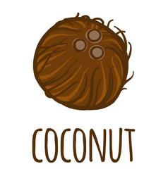 coconut icon hand drawn style vector image
