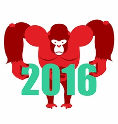 Gorilla keeps numbers 2016 Symbol of new year red vector image