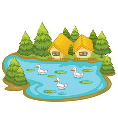 houses with ducks on white background vector image