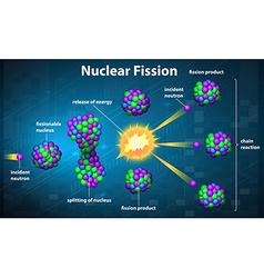 Nuclear fission vector image