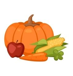 Pumpkin isolated vector