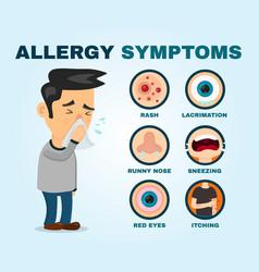 allergy symptoms problem infographic vector image