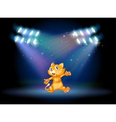 A stage with a playful cat vector