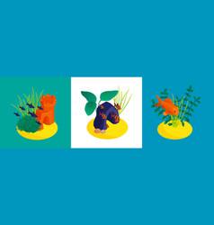 Aquarium isometric design concept vector