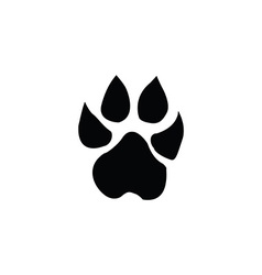 lion footprint vector image