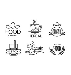 natural detox hearbal organic linear logo set vector image
