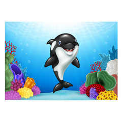Cute orca with beautiful underwater world vector image vector image