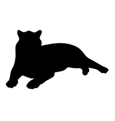 Black silhouette of lying tiger on white vector