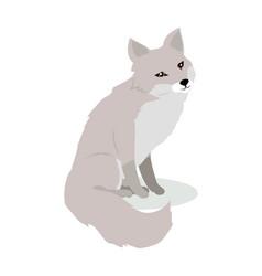 fox cartoon in flat design vector image vector image