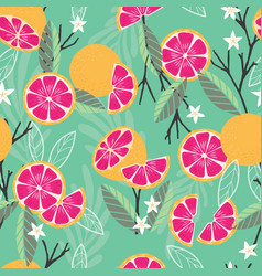 fruit seamless pattern grapefruit with branches vector image