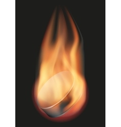 Ice hockey ball with flame vector image