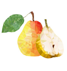 polygon fruit abstract of a vector image
