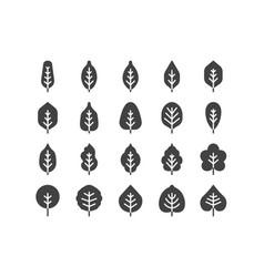 Spring solid glyphe line icon set concept vector