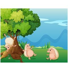 Three playful molehogs near the old tree vector image